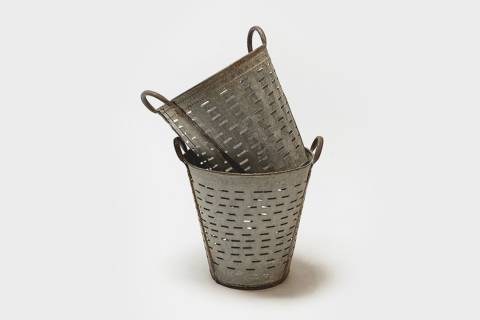 Webster Olive Buckets featured image