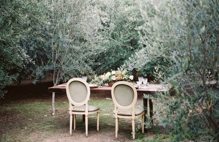 Olive Grove Inspiration Featured on Wedding Sparrow featured image