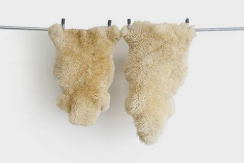 Bethlehem Vintage Sheepskin featured image